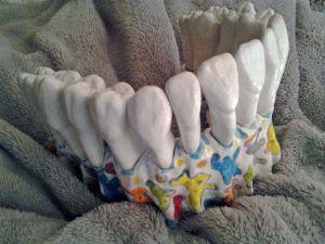 Dents blanches et maxillaire coloré: Belle à croquer !