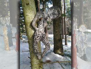 Situation dominante.. accrochée à l'arbre