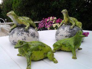 grenouilles-en-folie