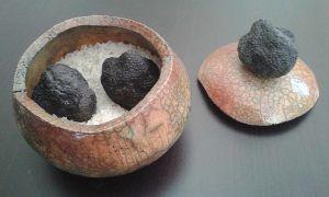 truffes-longue-conservation